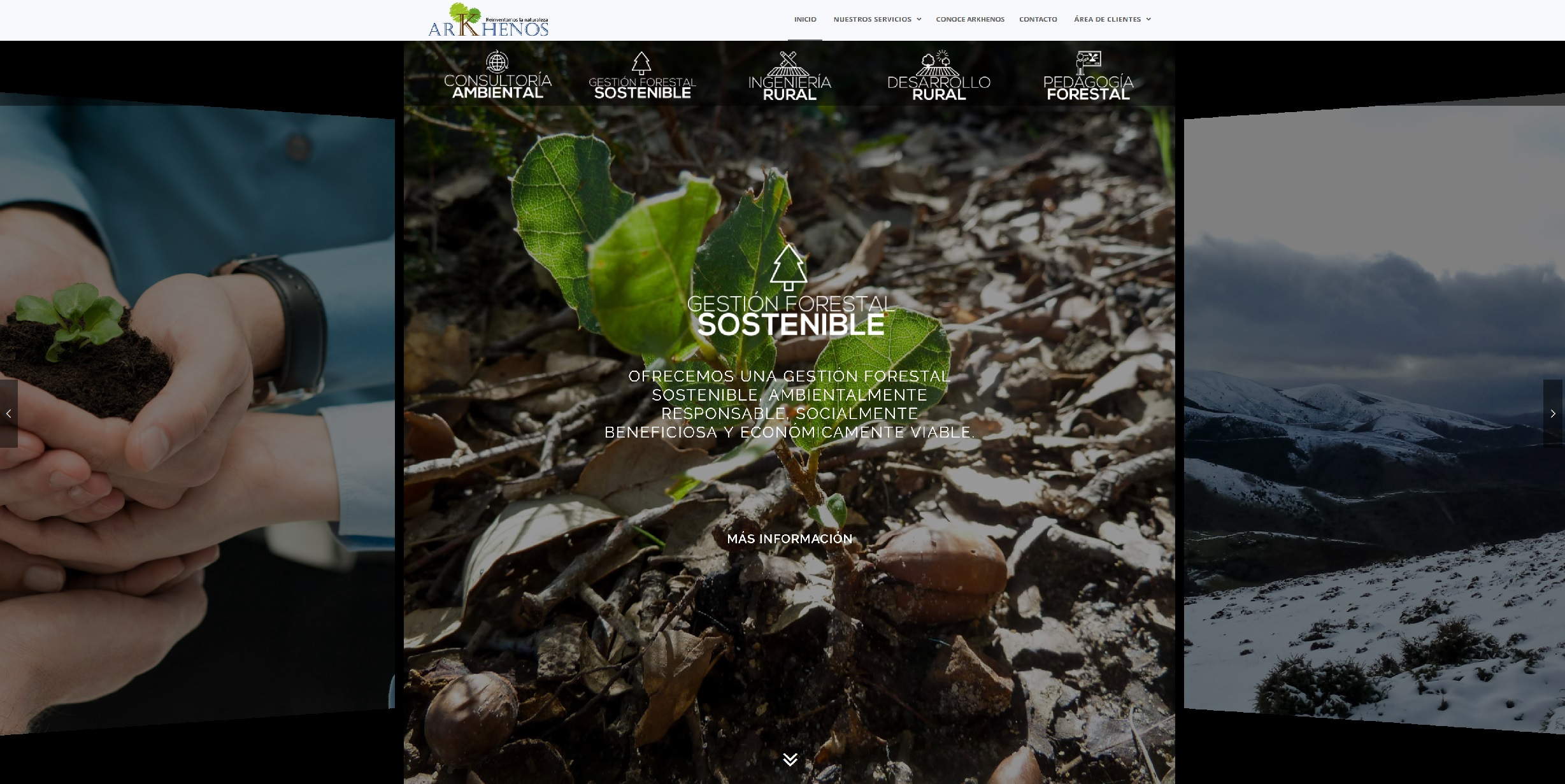 Diseño web para empresa  de Medio Ambiente Arkhenos